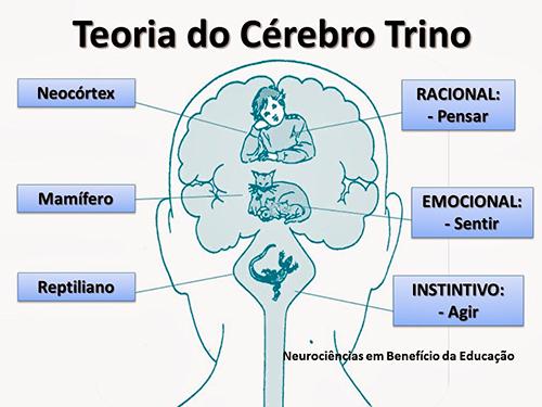 Teoria do Cérebro Trino